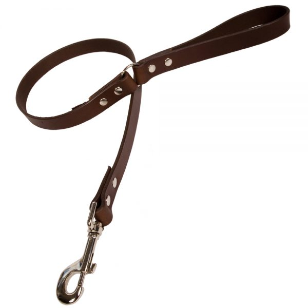 Plain Leather Dog Lead - Chocolate with Nickle