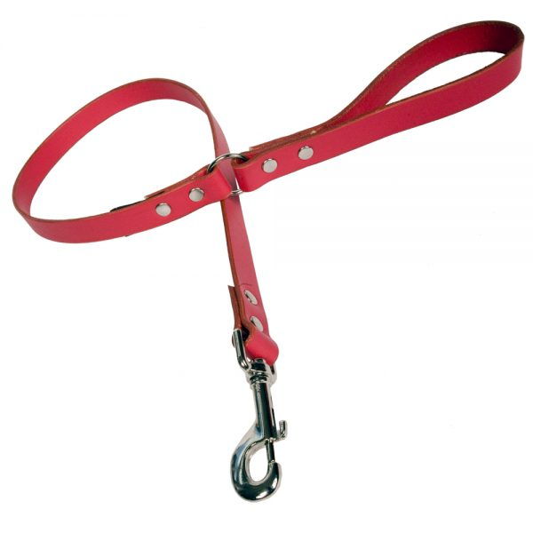 Plain Leather Dog Lead - Red with Nickle
