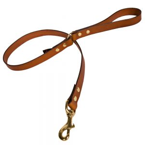 Plain Leather Dog Lead - Tan with Brass