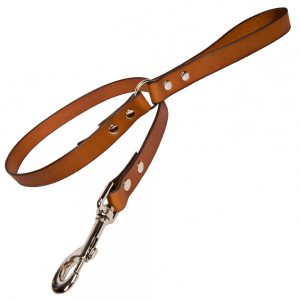 Plain Leather Dog Lead - Tan with Nickle