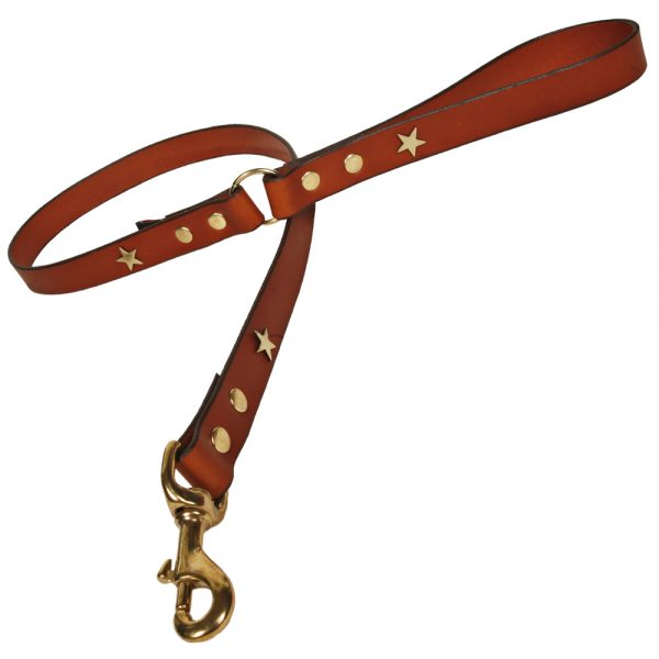 Classic Leather Dog Lead - Tan with Brass Stars