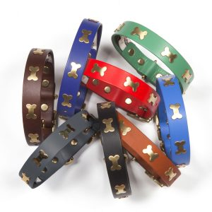 Leather Dog Collars & Leads with Brass Bones