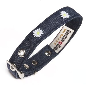 Denim with daisies dog collar