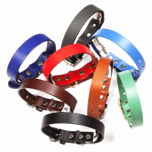Plain Leather Dog Collars & Leads