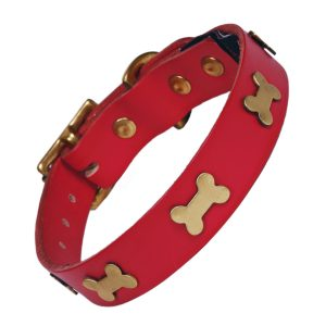 Red leather dog collar with brass bones
