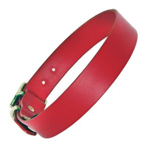 Red leather Dog Collar plain