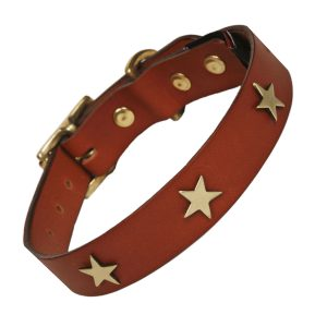 Tan Leather dog collar with brass stars