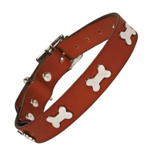 Tan leather dog collar with silver bones