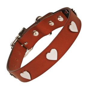 Tan Leather silver heart Dog collar