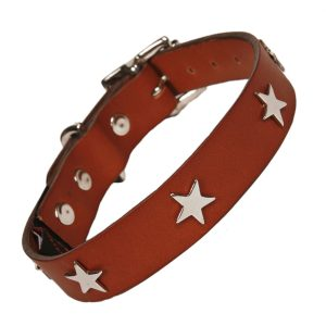 Tan leather dog collar silver stars