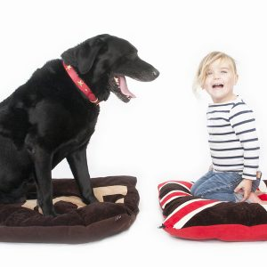 Dog Doza Beds