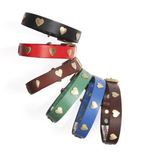 Leather Dog Collars & Leads with Brass Hearts