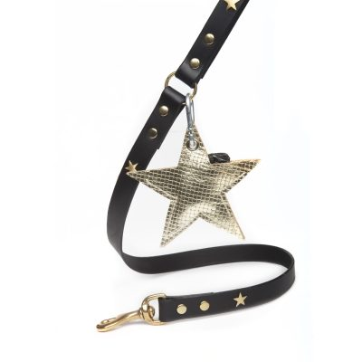Classic Leather Dog Lead with Golden Poo Pouch