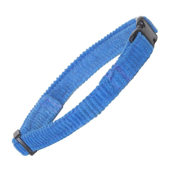 Cat Collar in Electric blue Corduroy