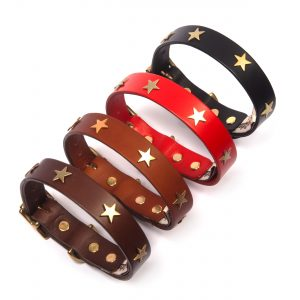 Leather Dog Collars & Leads with Brass Stars