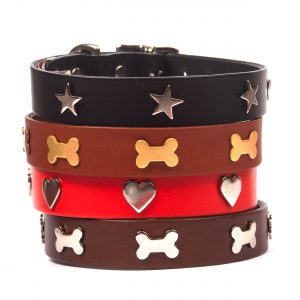 Classic Leather Studded Dog Collars & Leads