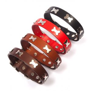 Leather Dog Collars & Leads with Silver Bones