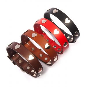 Leather Dog Collars & Leads with Silver Hearts