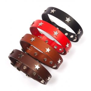 Leather Dog Collars & Leads with Silver Stars