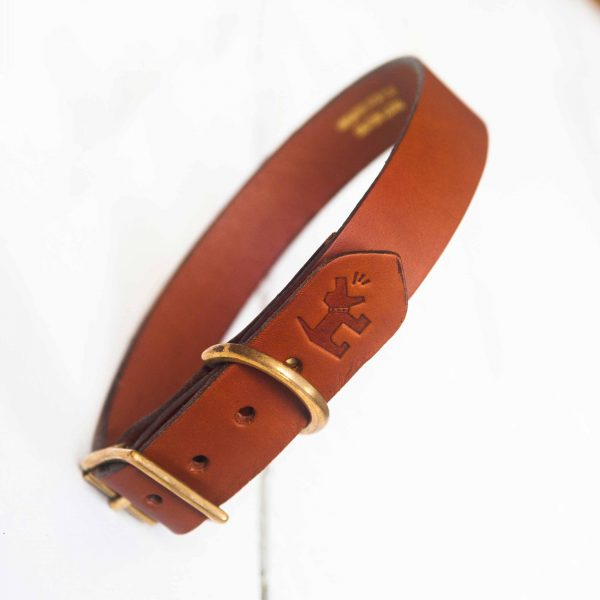 Personalised tan leather dog collar embossed with your contact number
