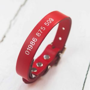Personalised red leather dog collar embossed with contact number