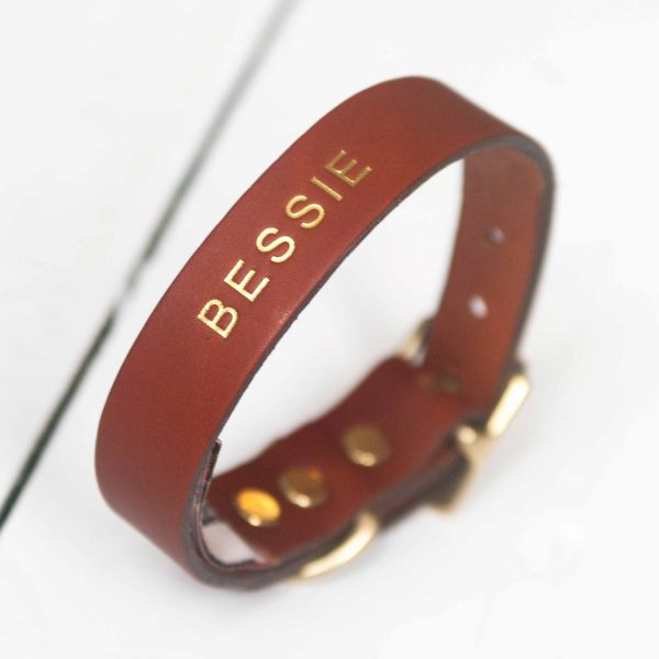 Personalised tan leather dog collar dog's name embossed gold