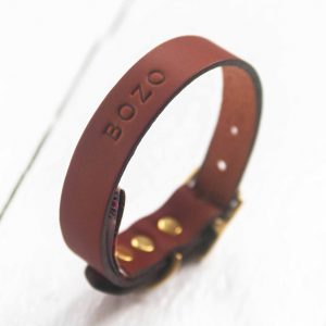 Personalised choc leather dog collar embossed dog's name plain